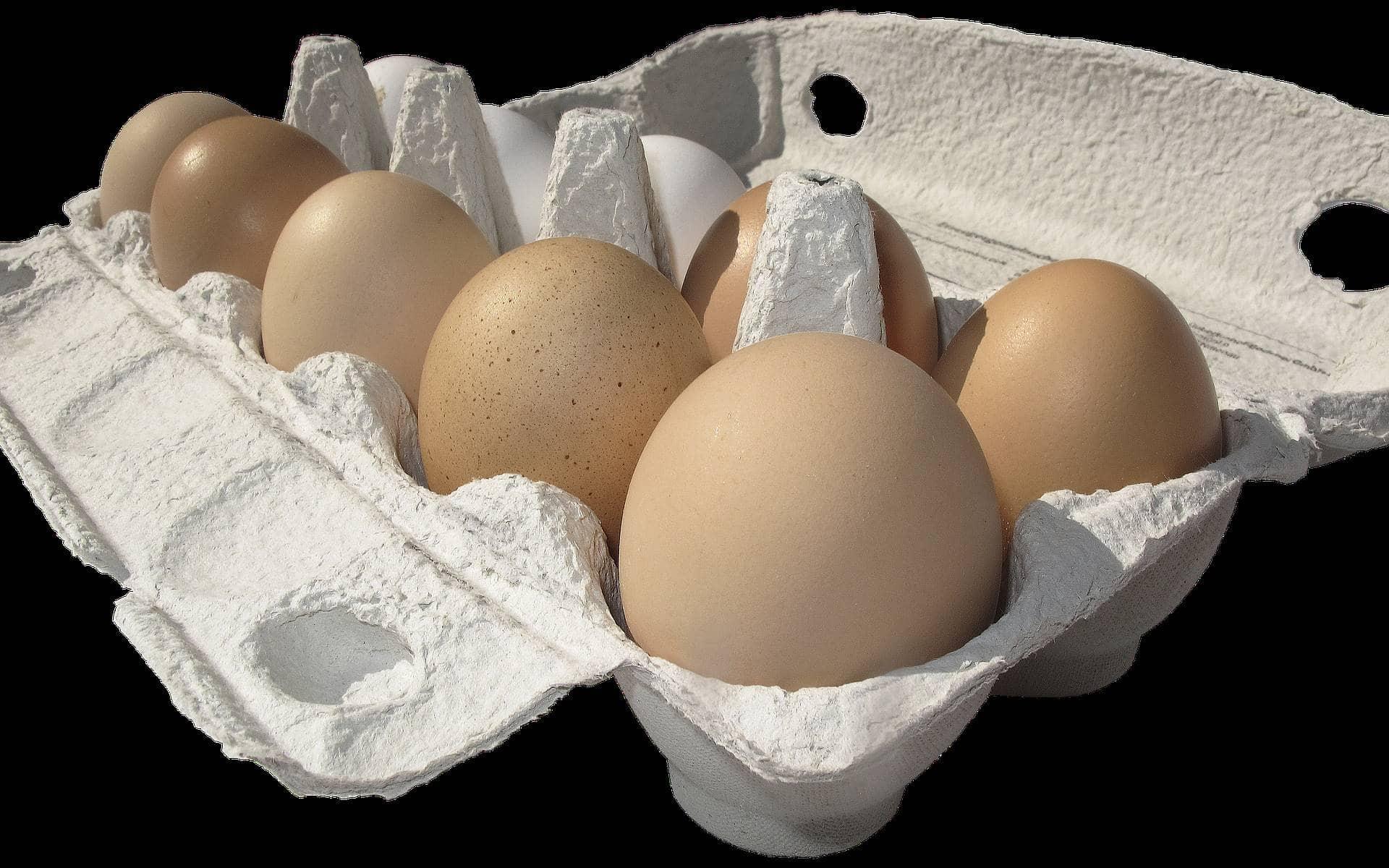 הביצים הושארו ברכב בחום הכבד, צילום אילוסטרציה